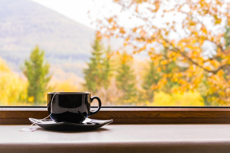 A cup of tea in front of a window.
